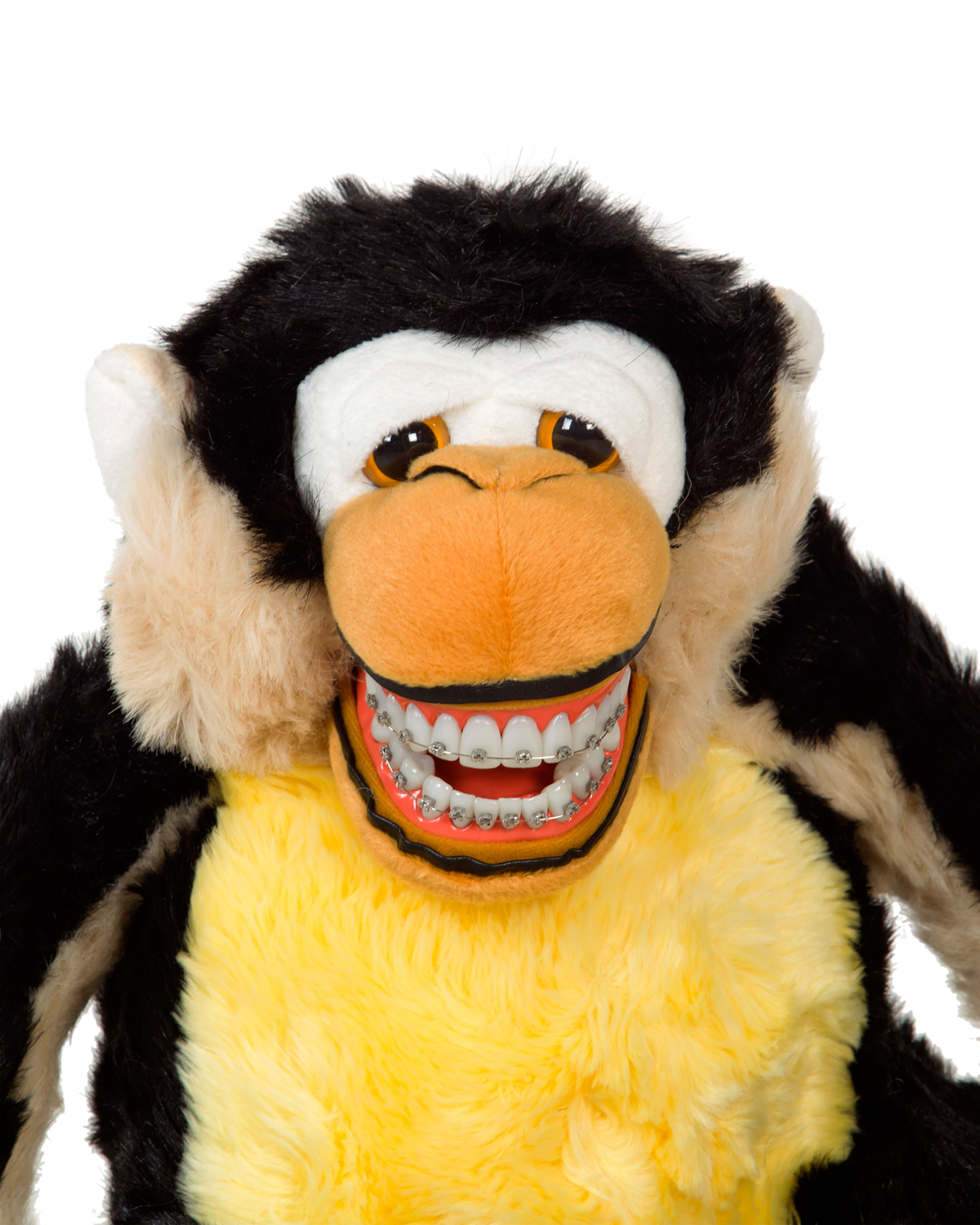 Orthodontic Mojo Monkey with Braces